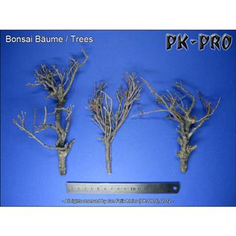 PK Bonsai Trees