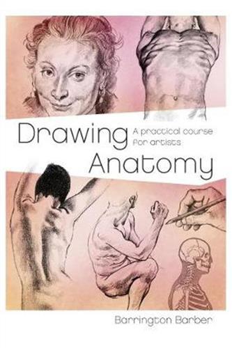 Drawing Anatomy (Paperback)