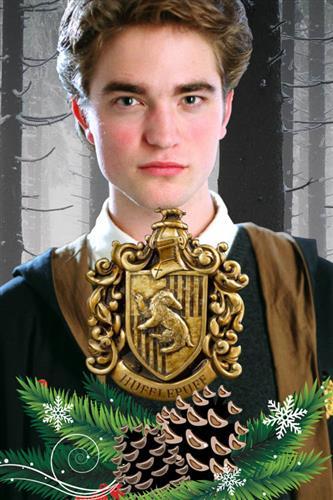 Harry Potter - Hufflepuff Adventskalender 2019