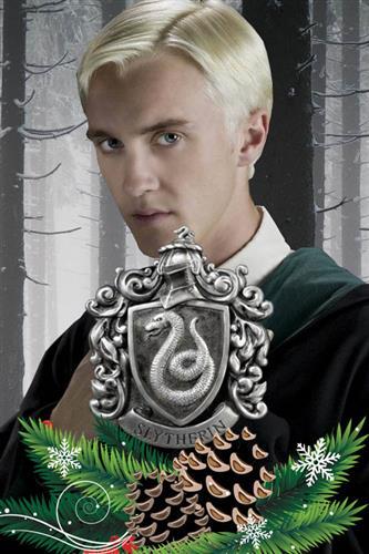 Harry Potter - Slytherin Adventskalender 2019