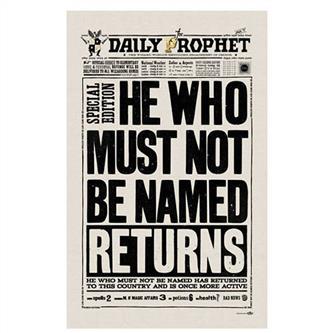 Harry Potter - He Who Must Not Be Named, Viskestykke