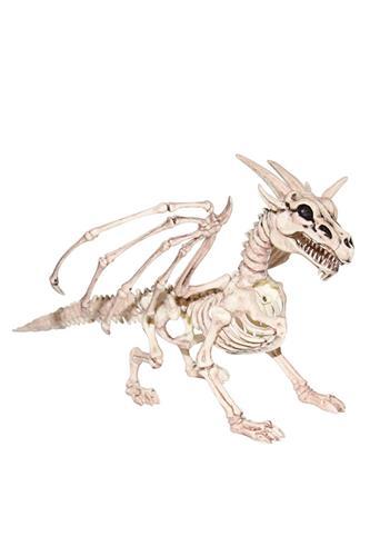 Skelet Drage