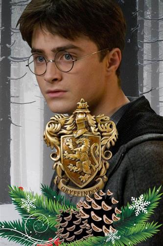 Adventskalender Gryffindor