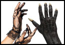 Hænder og arme